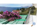 Apartments Vito - Baška Voda Croatia