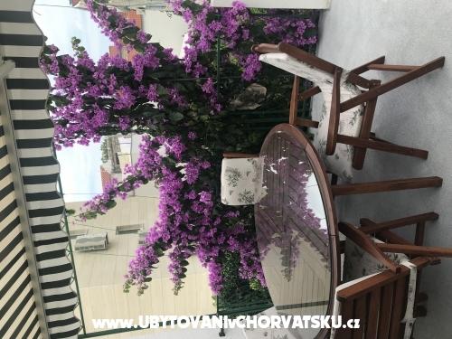 Apartmaji Sara 40% discount - Baška Voda Hrvaška