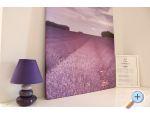 Apartmán Lilac - Bibinje Chorvatsko