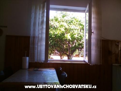 Apartmani Šimunić Punta - Bibinje Hrvatska
