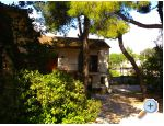 Apartments Vesna - Biograd Croatia
