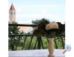 Villa Neda - Brač Chorvatsko