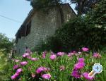 Villa Santa Lucia, Island of Brac, Croatia