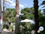 Apartments Carmen - Brela Croatia