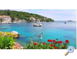 Apartments Villa Ana Molunat - Dubrovnik Croatia