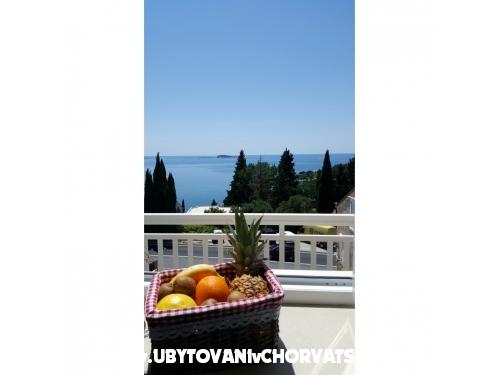 Villa Silvana - Dubrovnik Chorvátsko