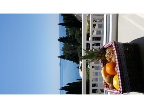 Villa Silvana - Dubrovnik Hrvatska