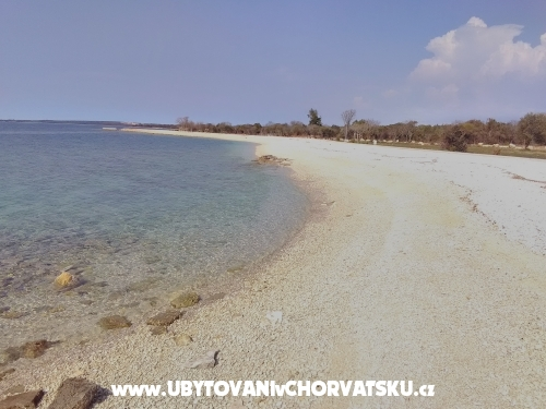 Luka - Fažana Chorvatsko