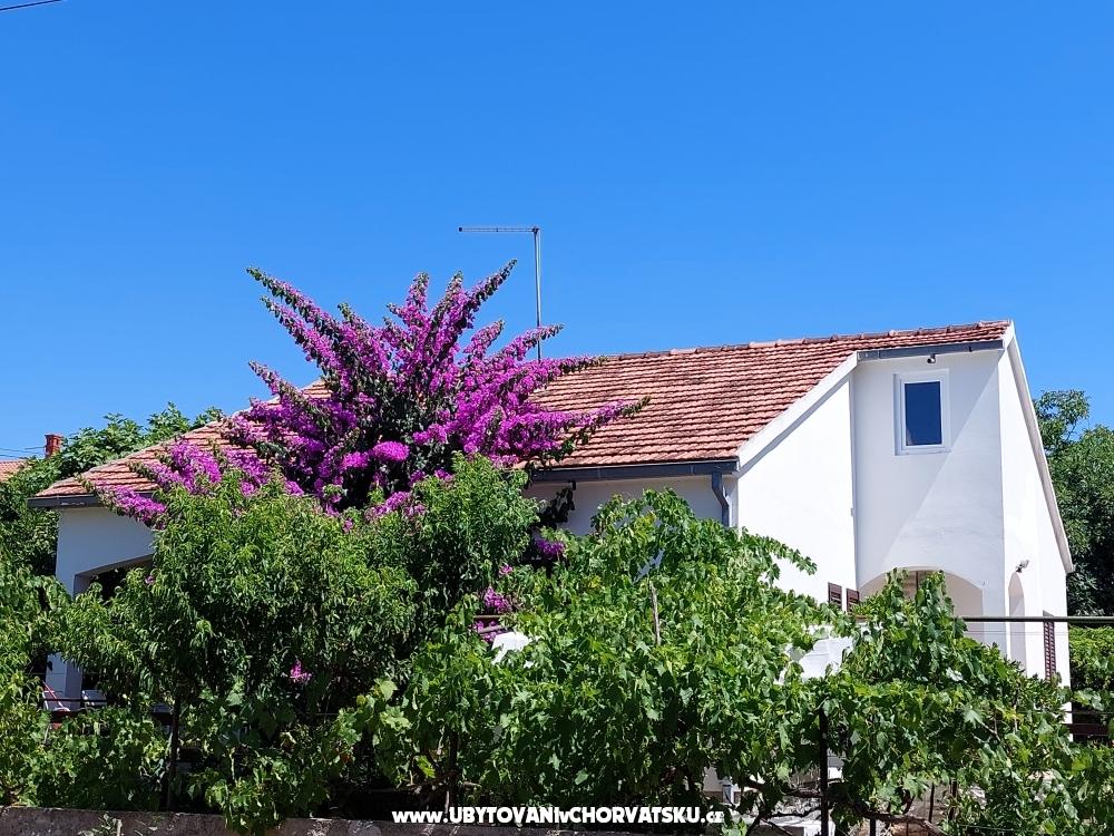 Vakáció - Apartman Milka - Sv. Filip i Jakov Horvátország