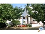 Ferienhaus - Apartment Milka - Sv. Filip i Jakov Kroatien