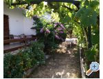 Vacation house - Apartment Milka - Sv. Filip i Jakov Croatia