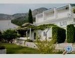 Apartamenty Mimoza - Gradac – Podaca Chorwacja