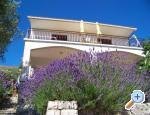Insel Hvar Appartements Stipi�i�