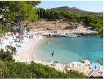 Ferienwohnungen Smokva - Villa Tudor - ostrov Hvar Kroatien