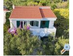 Villa Maslina - Igrane Hrva�ka