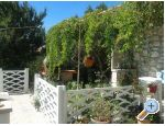 Vacation house - Zapuntel - ostrovy Ist - Molat Croatia