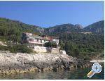 Apartamenty Šain - Korčula Chorwacja