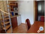 Appartements Sunce - Korčula Kroatien