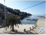 Apartmani Toni - Korčula Hrvatska
