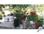 Apartment Sever - ostrov Krk Croatia