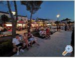 Ferienwohnungen Blazevic, Njivice - ostrov Krk Kroatien