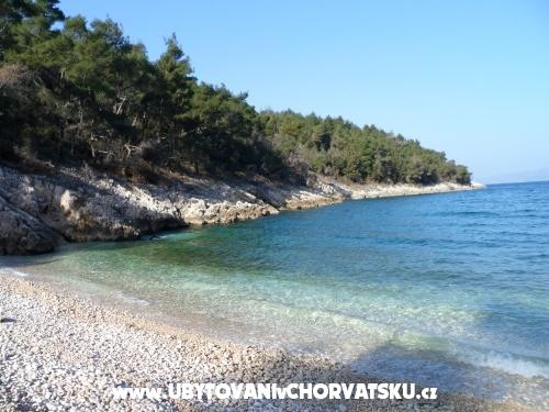 Villa Lidija - Labin Kroatien