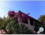 Villa Paradise - ostrov Lastovo Croatia
