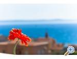 Apartmány Luka - Makarska Chorvatsko