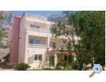 Appartements Tino - Makarska Kroatien