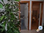 Studio apart. Veselko Beus - Makarska Horvátország