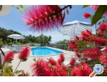 Villa NOA - Makarska Kroatien