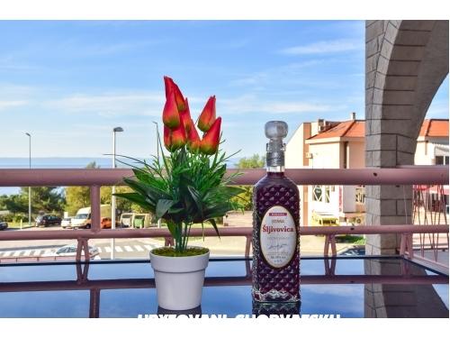 Villa Orhideja - Makarska Horv�torsz�g