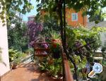 Apartmani  Vodarić - Mali Lošinj Hrvatska