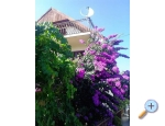 Haus Marino - Marina – Trogir Kroatien