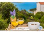 Apartamenty Vila Nena z basenem - Marina – Trogir Chorwacja