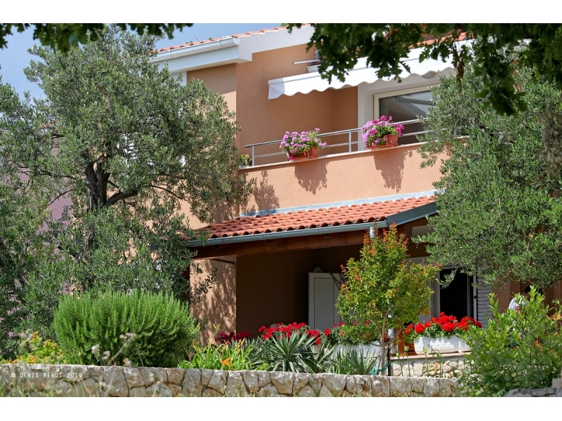 Appartements Mare - Maslenica Croatie