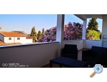 Appartements Vera - Medulin Kroatien