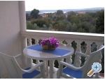 Ferienwohnungen Paloma blanca - Oaza Reg - Medulin Kroatien