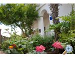 Apartment Lucija - Nin Croatia
