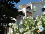 Apartmani Andjela Kroatien