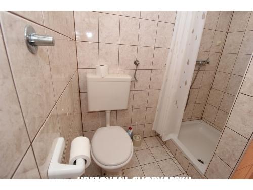 App Stanko - Novalja – Pag Hrvatska