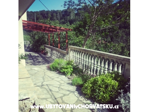 Holiday home Vito - Novigrad Kroatien