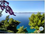 Apartments Katica - Omi� Croatia