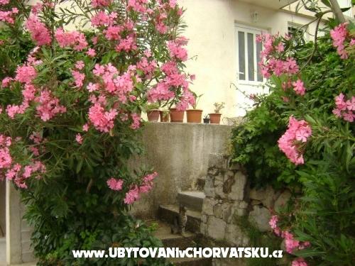 Apartmani Suco - Omi� Hrvatska