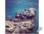 Garden of Pleasure - Opatija Chorv�tsko