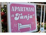 Appartements Tanja - Orebić – Pelješac Kroatien