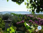 Villa Lea - Orebi� � Pelje�ac Chorvatsko