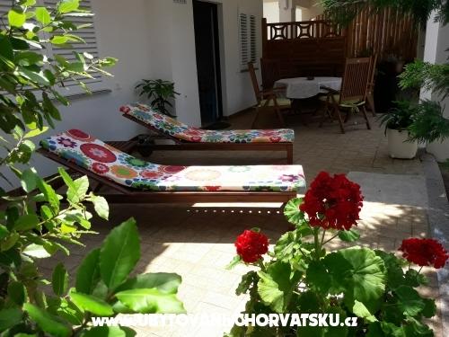 Lola - ostrov Pag Hrvatska