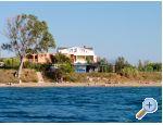 Sirena - ostrov Pag Croatia