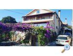 Apartm�ny Iva - Pako�tane Chorvatsko